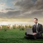 Farming Partnership agreement