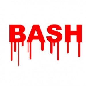 Bash or Shellshock bug